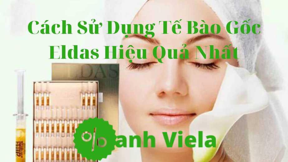 Cách sử dụng hiệu quả tế bào gốc Eldas