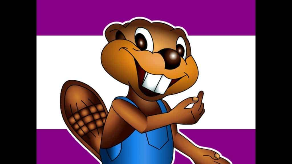 Busy Beavers Kids English